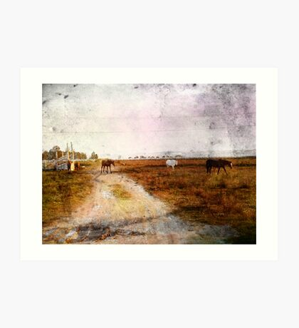 Out On The Plains Art Print