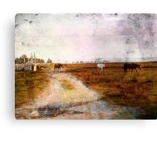 Out On The Plains Canvas Print