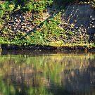Green Reflections by John Kroetch