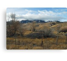 Brush with Greatness Canvas Print