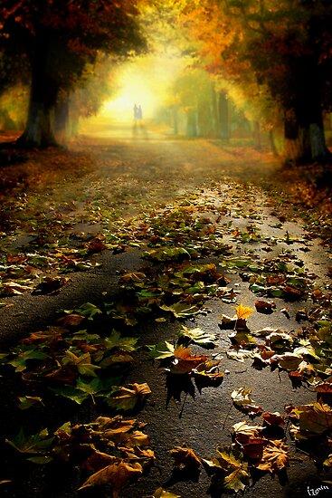 Promenade by Igor Zenin