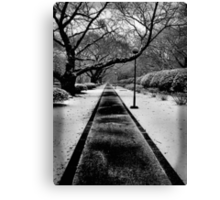 Snowblind (Colorless Section) Canvas Print