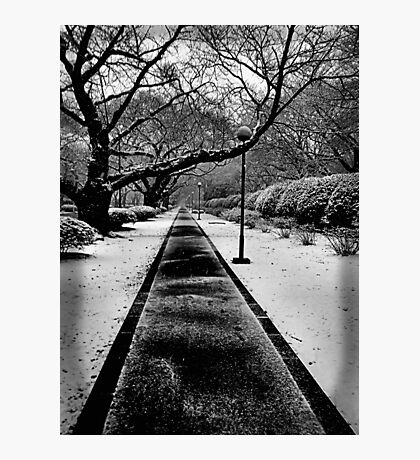 Snowblind (Colorless Section) Photographic Print