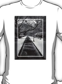 Snowblind (Colorless Section) T-Shirt