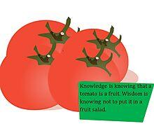 tomato swag Photographic Print