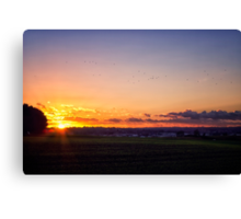 Sunset Flyby  Canvas Print