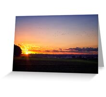 Sunset Flyby  Greeting Card