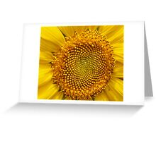 Burst of Sunshine Greeting Card