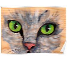 cat eyes 1 Poster