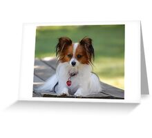 Topper Greeting Card