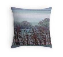 Winter in Hertfordshire Throw Pillow