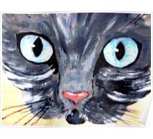 cat eyes 3 Poster