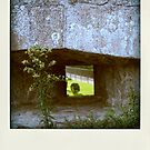 Faux-polaroids - Travelling (6) by Pascale Baud