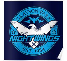 Grayson Park Nightwings White Blue (03 of 04) Poster
