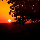 When The Sun Paints  by Kuzeytac