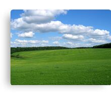 Nice landscape Canvas Print
