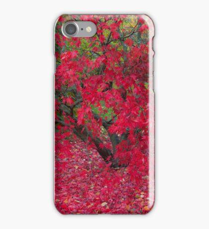 Red Fall iPhone Case/Skin
