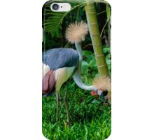 The Two Headed Bird, Iguazu, Brazil iPhone Case/Skin