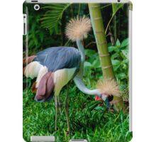 The Two Headed Bird, Iguazu, Brazil iPad Case/Skin