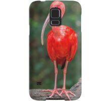 Bird, Iguazu, Brazil Samsung Galaxy Case/Skin