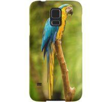 Parrot in the Rainforest near Iguazu, Brazil Samsung Galaxy Case/Skin