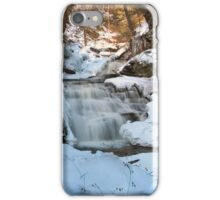 Mohican Falls Surrounded By Winter White iPhone Case/Skin