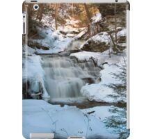 Mohican Falls Surrounded By Winter White iPad Case/Skin