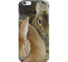 Easter Bunnies iPhone Case/Skin