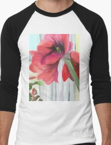 Blooming Amaryllis and Poinsettia Men's Baseball ¾ T-Shirt