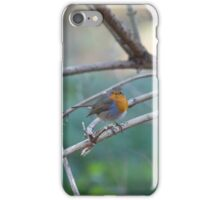 When A Robbin Crosses Your Path iPhone Case/Skin
