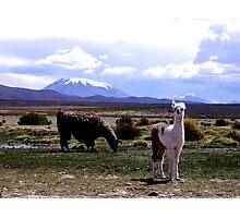 Bolivia Photographic Print