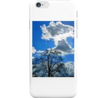 """""""What a difference a day makes..."""" iPhone Case/Skin"""