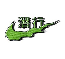 Chinese Sneak Green Snake Skin Photographic Print