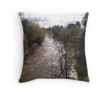 Maitland river Throw Pillow