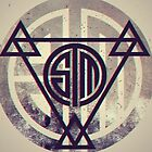 TSM Grunge by TheInv4sion