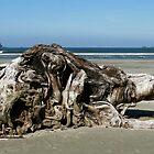 Tofino beach sculpture by Chris Allen