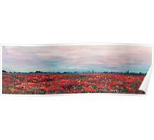 Provence Poppy Field Poster