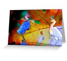 Dancing Egrets Greeting Card