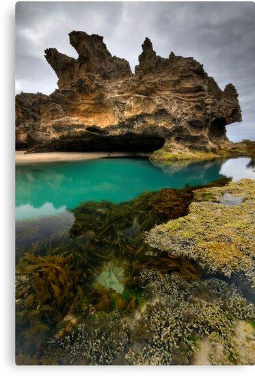 Peninsula Pools by Robert Mullner