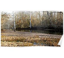 Tributary In Autumn Poster