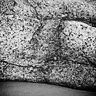 Rock by Lea Valley Photographic