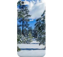 Coconino National Forest iPhone Case/Skin