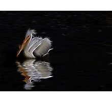 lonely pelican Photographic Print
