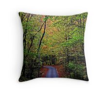 A turn on life's road, a new beginning.. Throw Pillow