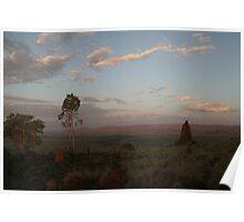 Termite Mound....Evening light Poster
