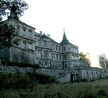 Old castle... by TarasKokovsky