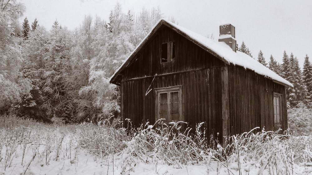 'First snow: Back in Time' by Petri Volanen