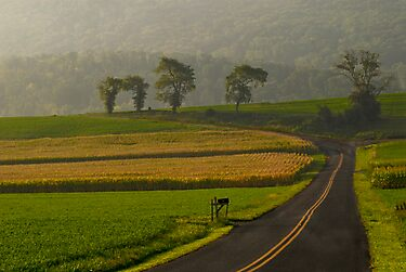 Take Me Home Country Roads by Andy Mueller