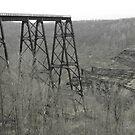 Kinzua Bridge (over look 2) B&W by hallucingenic