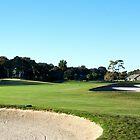 Hilton Head Golf Course sandtrap by dbschanck